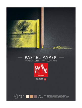 Caran D'ache Pastel Boya Kağıdı 24 x 32 cm 12 Yaprak 454.011