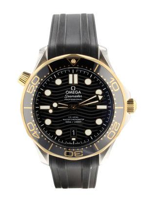 Omega Seamaster Diver 300 m Omega Co-Axial Master Chronometer 42 mm 210.22.42.20.01.001