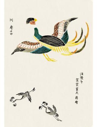 Sauca Collection Japon Renkli Turna Taguchi Tomoki 2 A3 JAB59