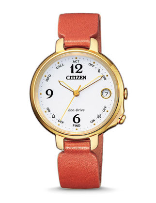 Citizen Eco-Drive EE4012-10A