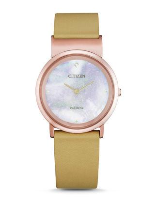 Citizen Eco-Drive EG7073-16Y