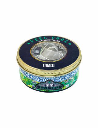 Fameo Caffe Feel Cool Bitki Çayı FAMFM1000035S
